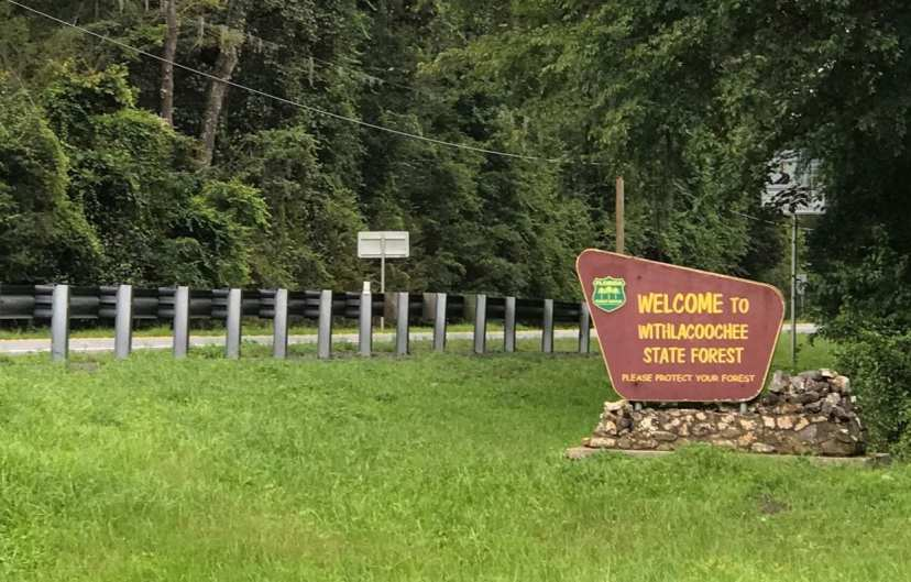 withlacoochee state forest sign