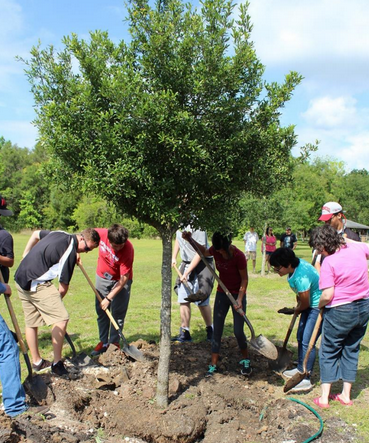 The City of Brooksville's Beautification Board and the Brooksville City Council are excited to announce they will be hosting the 32nd Annual Arbor Day Celebration on Friday, April 30, 2021 at 10:00 am.