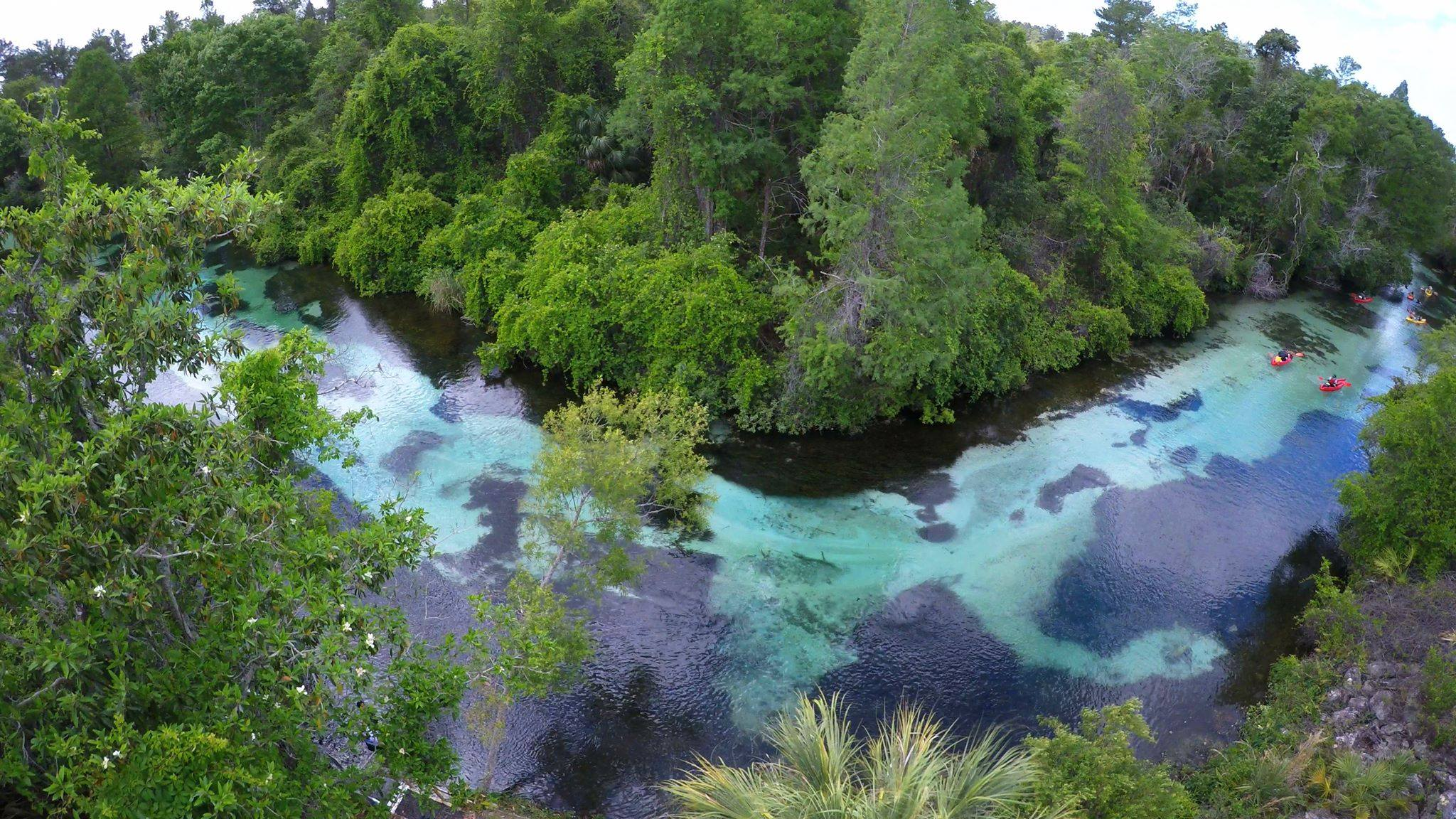 weeki wachee river bend