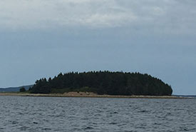 Island on Mahone Bay, NS (Photo by MICA)