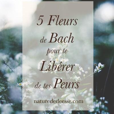 5 fleurs de Bach pour te libérer de tes peurs