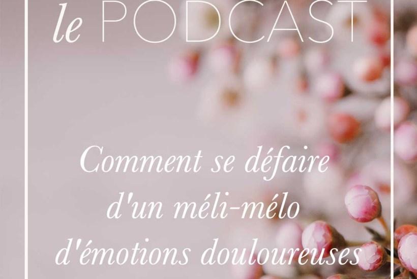 Comment se défaire d'un méli-mélo d'émotions douloureuses ou négatives - Podcast Nature de déesse