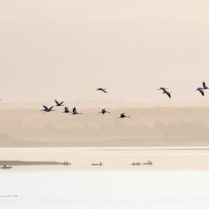 France-Haute Marne-Lac du Der