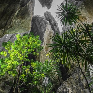Madagascar-Tsingy