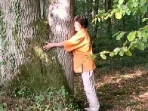 découvrir les bienfaits des plantes sauvages pendant le confinement