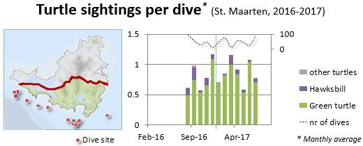 graph of turtle sightings per dive