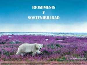 biomimesis-y-sostenibilidad-1-638