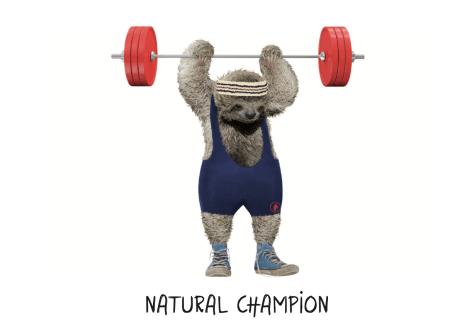 illustration-natural-champion