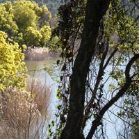 Lac et barrage du Trapan