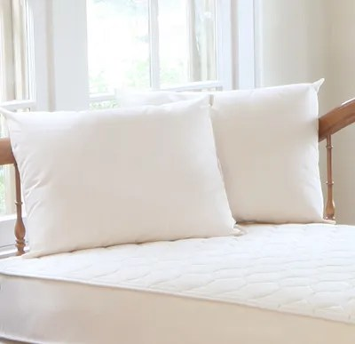 organic pillows for kids naturepedic