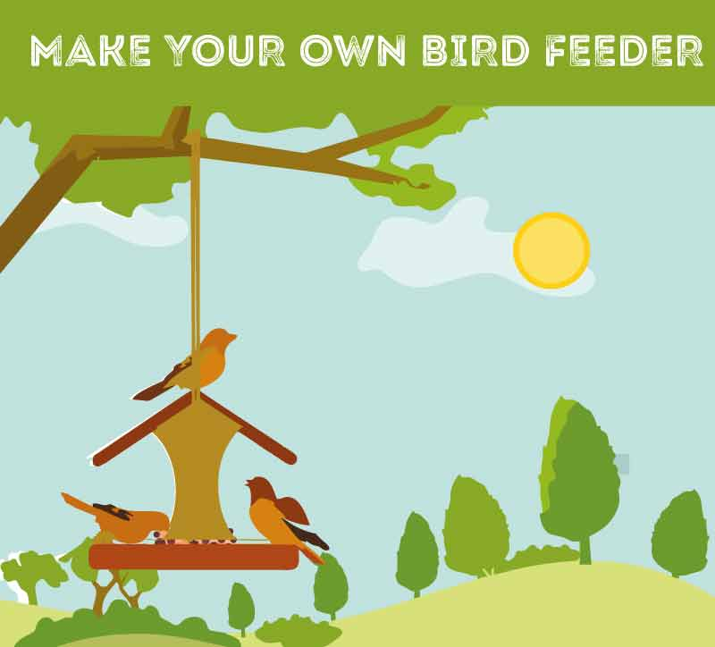 make-your-own-bird-feeder
