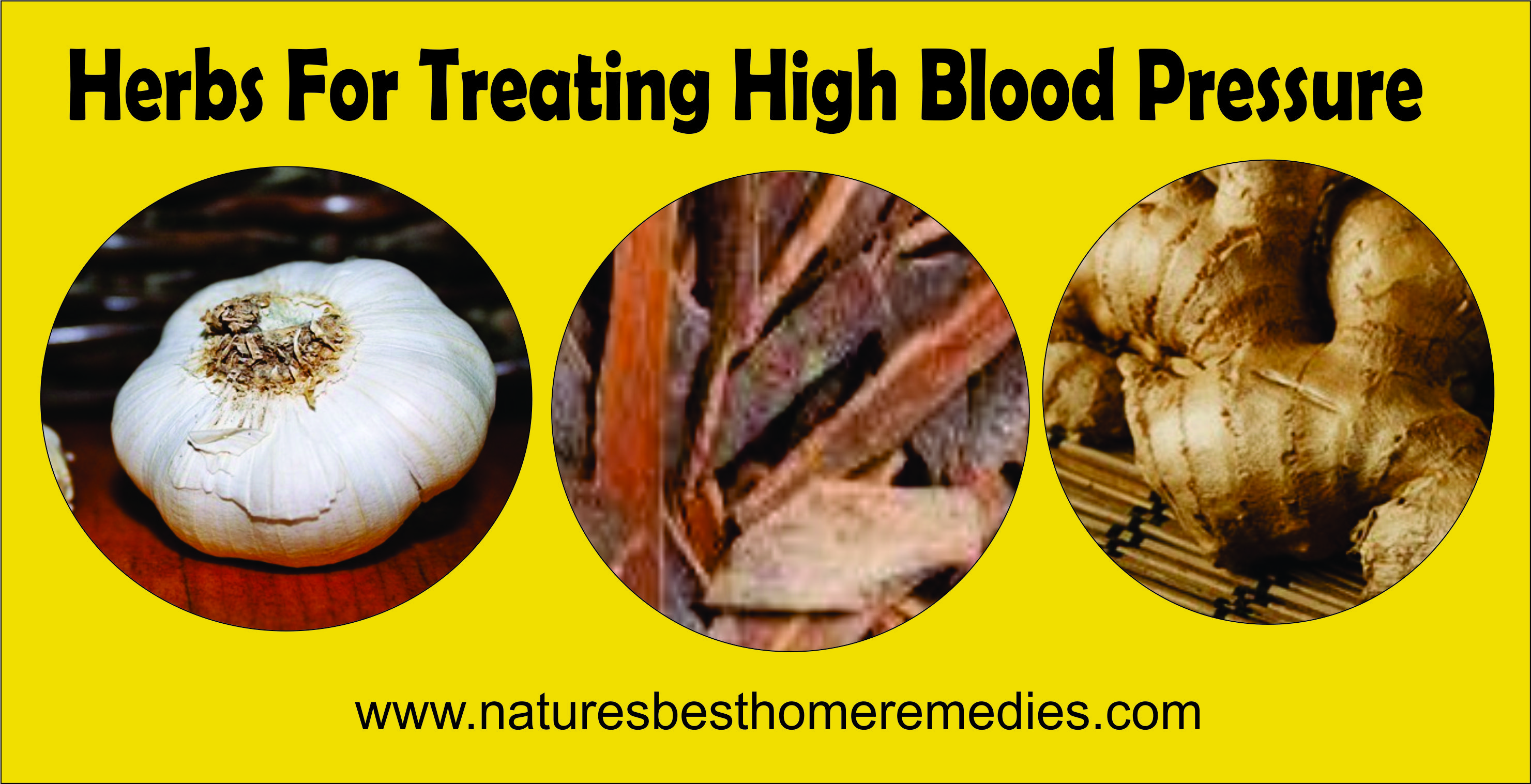 herbal-remedies-for-high-blood-pressure