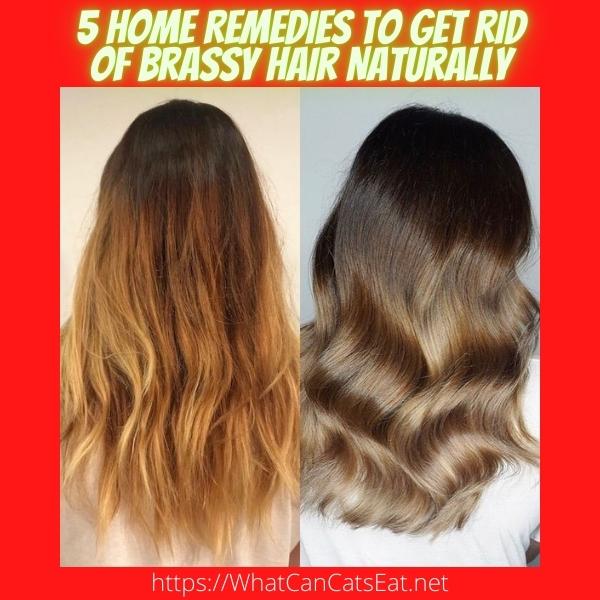 Get Rid Of Brassy Hair Naturally