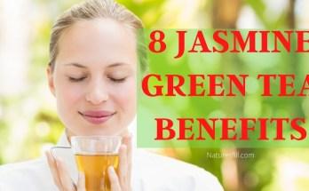 8 Jasmine Green Tea Benefits_
