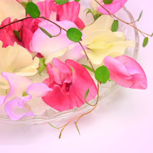 Sweet Pea Fragrance Oil