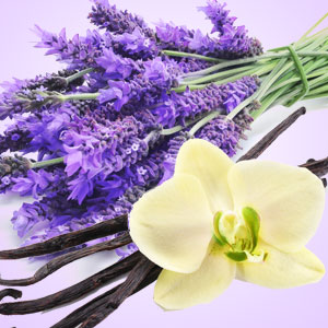 Best Lavender Fragrance Oils NG Vanilla Lavender Type Fragrance Oil