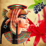 Queen of the Nile Fragrance Oil