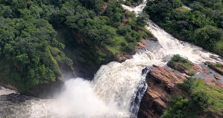 Ultimate Uganda Safari Holiday