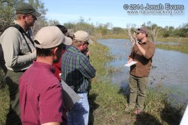 Tracking in South Texas