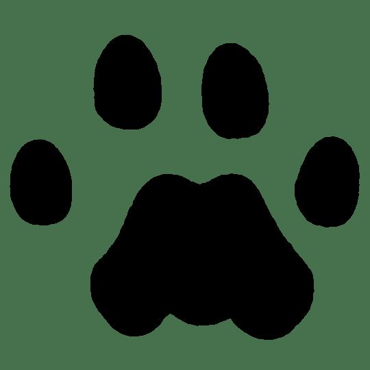 mountain lion tracks naturetracking rh naturetracking com Dog Tracks Clip Art Animal Tracks Clip Art