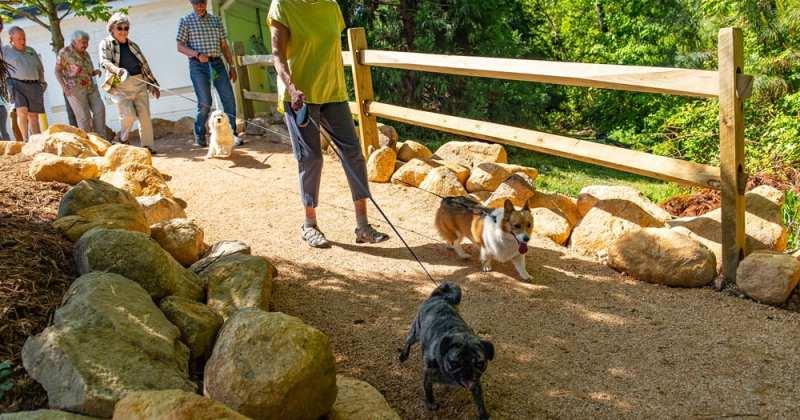 Galloway Ridge Nature Preserve & Dog Park – Phase I
