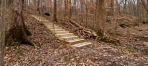 Walking Trail Steps Design Build