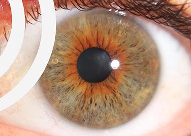 Iris- & Antlitzdiagnose