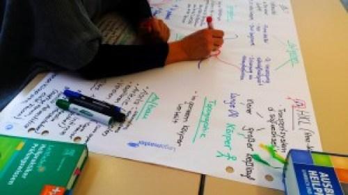 Mit Eifer bei der Arbeit: Im Team erstellen die Student/inn/en Flipcharts zu Anatomie, Physiologie und Pathologie.