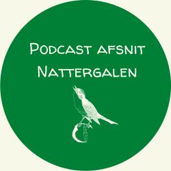 Illustration fra podcastafsnittet
