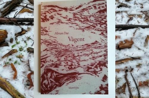 Billedet viser kogler i sne, med indlagt foto af Mirian Dues digtsamling på