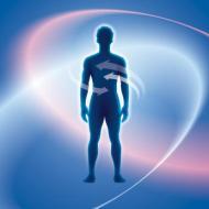 Toxinas: cómo eliminarlas. Limpiar nuestro interior con alimentos sanos