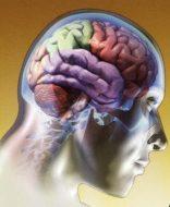 La Mente, el Pensamiento y Sus influencias