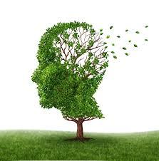 Alzheimer, un nouveau diabète ?
