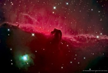An astronomy photograph showing IC434 & B33 - Horsehead Nebula Close-up with NGC-2023.