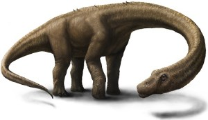 An artist's impression of a Dreadnoughtus - a genus of giant titanosaurian sauropod dinosaur which contains a single species,