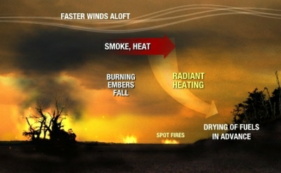 An infographic explaining how the spot fire mechanism works. Smoke and heat carry radiant energy that is seen drying the surrounding fuels before it starts burning.