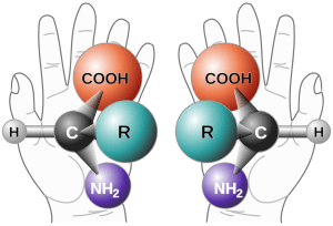 A drawing explaining the chirality of a molecule - the same assemblage of atoms ought to form the same molecule, but in fact a molecule can be either left-handed or right-handed.