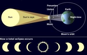 A diagram explaining how solar eclipses develop step-by-step.