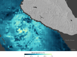 A meteorological map of the wind speed vectors of hurricane Patricia as it neared Mexico.