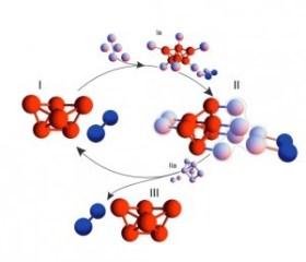 A diagram representing self-replicating sphere clusters.