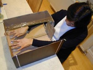 """A photograph showing a patient using the """"mirror box"""" technique. Source: EPSON DSC picture"""