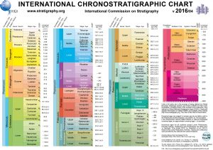 A chart showing the international conventions for Chronostratigraphy. Source: Stratigraphy.org