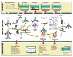 A diagram explaining the molecular toxicology of organophosphorus poisons. Source: Medical Corps International Forum