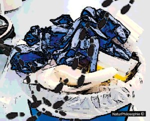 A drawing showing plastic laboratory waste piling up in a bin. Image: NaturPhilosophie