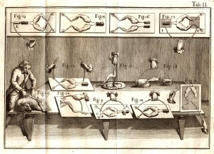 A lithography showing Luigi Galvani in his laboratory, with diagrams of electrical circuits connected to frog legs.
