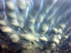 A photograph of mammatus clouds.