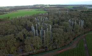 An aerial photograph of the BIFoR FACE experiment site.