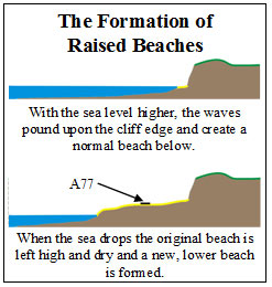 Two basic diagrams explaining the dynamic geological process for the formation of raised beaches.  First, with the sea level higher, the waves pound upon the cliff edge and create a normal beach below.  Then, when the sea level eventually drops, the original beach is left high and dry.  And a new, lower beach is formed.