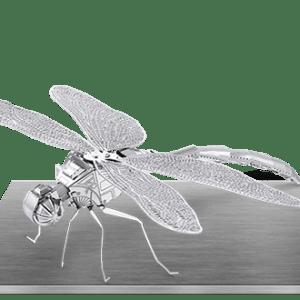 Dragonfly