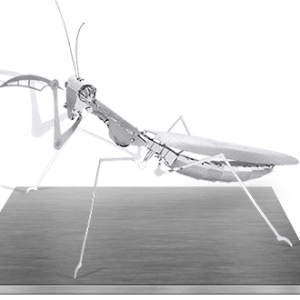product-praying-mantis